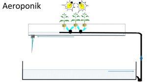 Abbildung: Skizze eines aeroponischen System