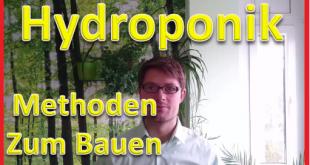 hydroponik-methoden-zum-selbst-bauen