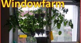 Newsletter Fimdowfarm